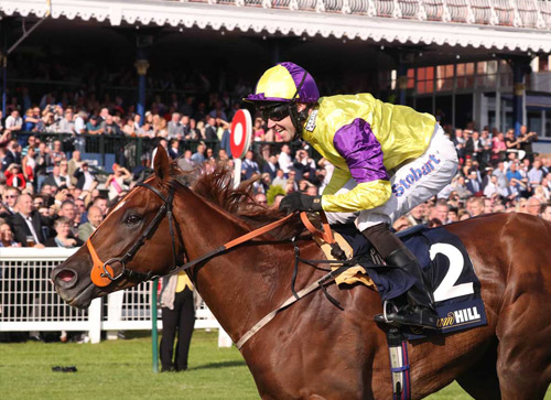 In 2016 Brando, trained by Kevin Ryan and ridden by Tom Eaves won the William Hill Ayr Gold Cup