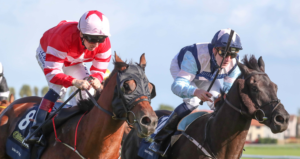 Son of Rest and Baron Bolt with a historic dead-heat win at the 2018 William Hill Ayr Gold Cup