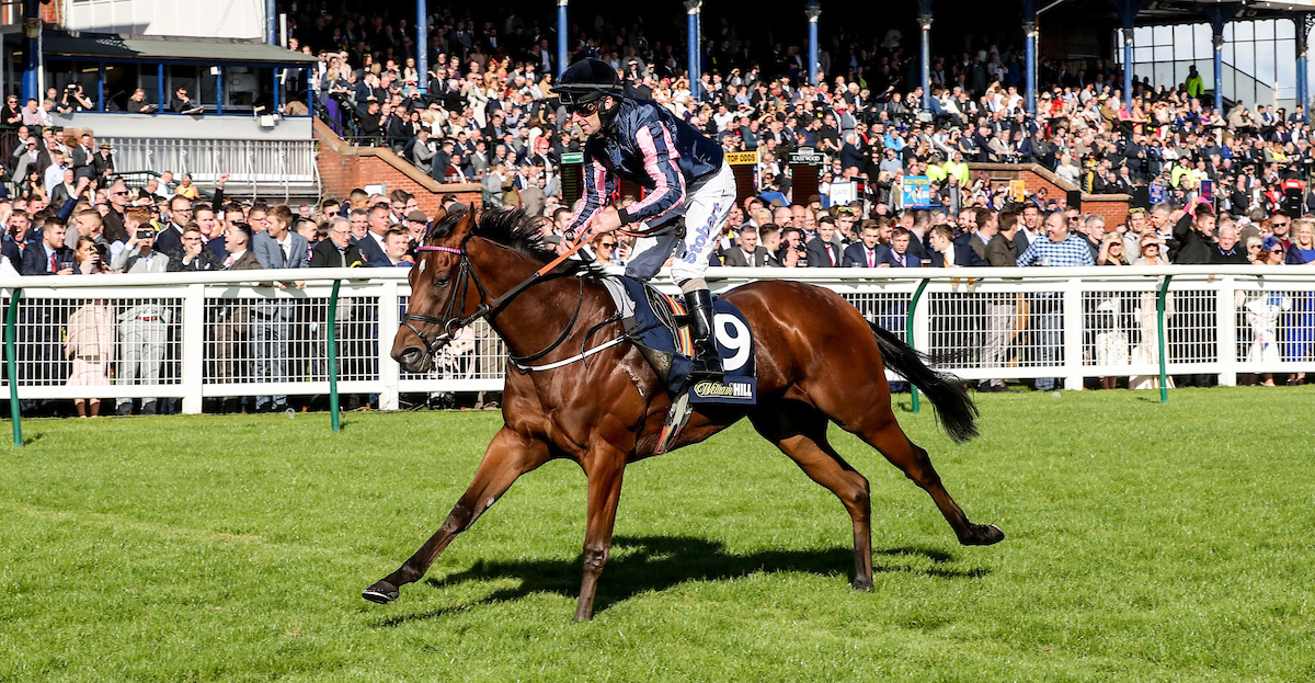 Queen of Bermuda and Joe Fanning win the 2018 William Hill Firth Of Clyde Stakes